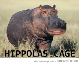 funny-nicolas-cage-photoshop-meme