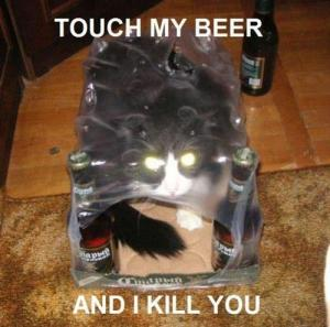 possessed-beer-cat